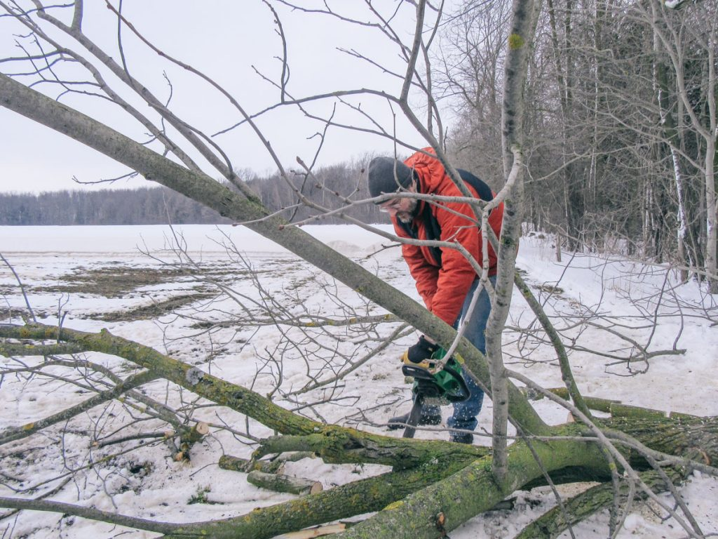 Cutting up the branches.