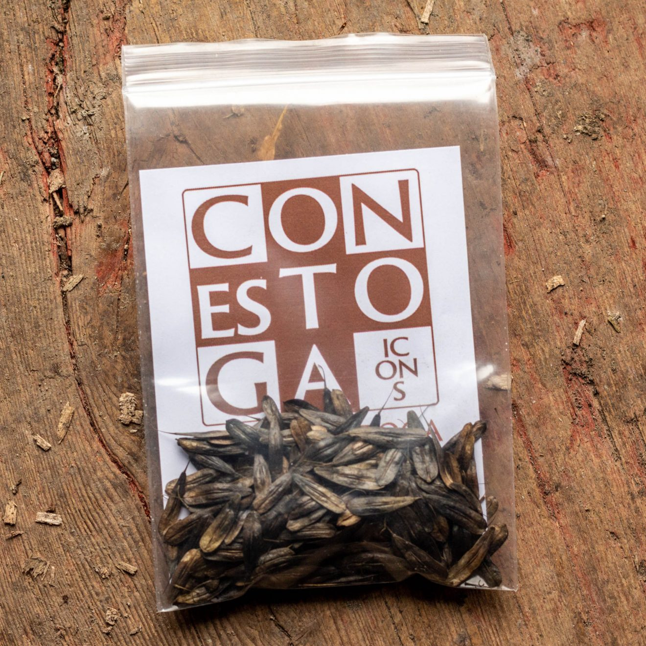 Woad Seeds Package